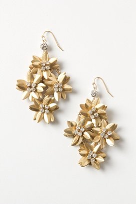 Anthropologie Goldflower Chandeliers
