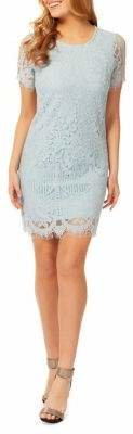 Dex Lace Cotton Blend Sheath Dress