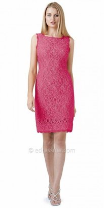Adrianna Papell Scalloped Lace Illusion Shift Cocktail Dresses