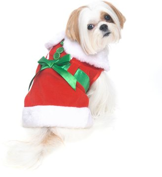 Bed Bath & Beyond Mrs. Claus Dog Costume in Red/White