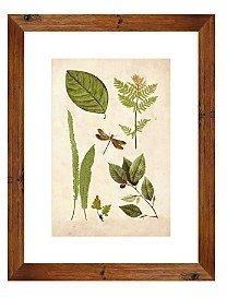 PTM Images Leaf Sheet Ii Wall Art