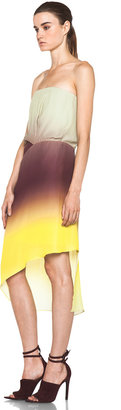Acne Studios Anya Degrade Dress in Degrade