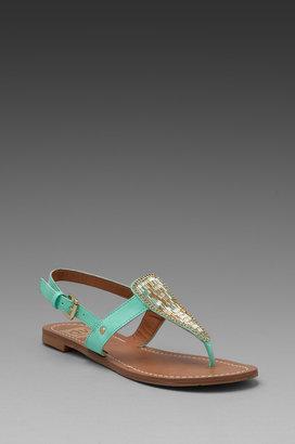 Dolce Vita Domino Sandal