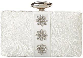 Mary Frances Mary France Clarity - Aria Clutch Handbag