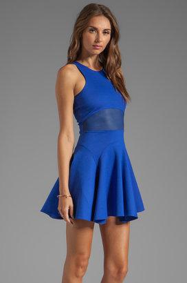 Mason by Michelle Mason Flare Tank Dress
