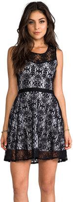 BB Dakota Diza Nouveau Lace Dress