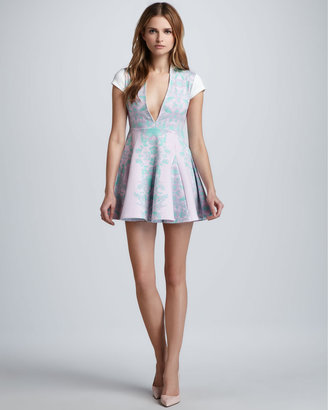 Pencey Plunging Printed Flare Dress
