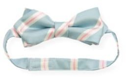 Janie and Jack Stripe Bowtie