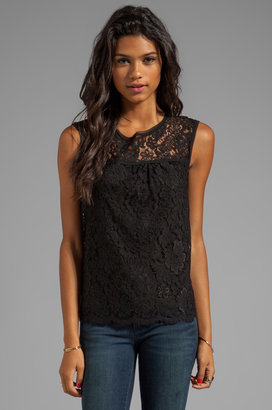 Milly Floral Scalloped Lace Shell Top