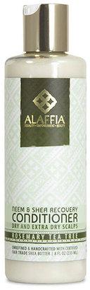 Scalp Recovery Conditioner by Alaffia (8oz Conditioner)