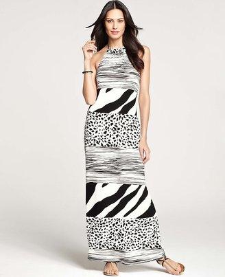 Ann Taylor Tall Animal Trio Stripe Halter Maxi Dress