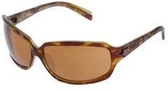 Fox The Intro (Brown Tortoise) - Eyewear
