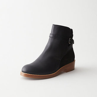 Acne clover low heel ankle boot