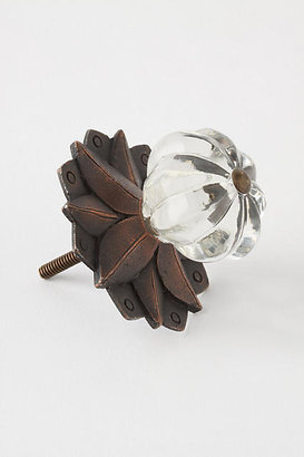 Anthropologie Galaxy Knob