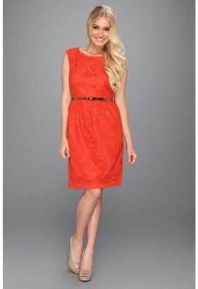 Ellen Tracy Cap Sleeved Lace Sheath w/Belt (Orange) - Apparel