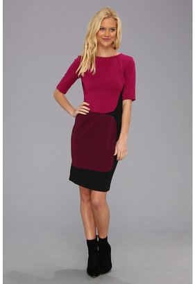 Maggy London Elbow Sleeve Color Block Scuba Dress (Plum Combo) - Apparel