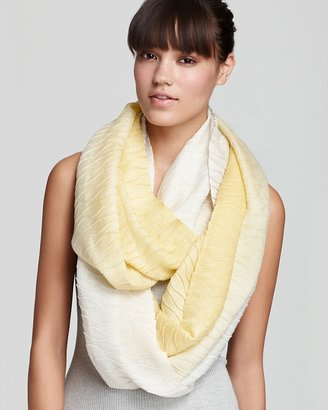 Echo Pleated Ombre Loop Scarf