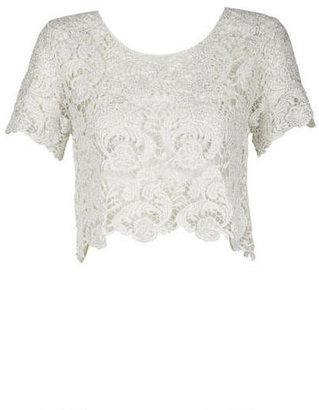 Delia's Foil Lace Crop Top