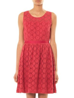 Collette Dinnigan Collette By Fields of daisy lace dress