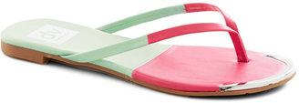 Dolce Vita Piazza Tour Sandal in Watermelon