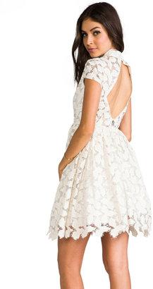 Alice + Olivia Jayna Lace Open Back Flare Dress