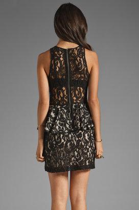 Style Stalker Panthers Lace Dress