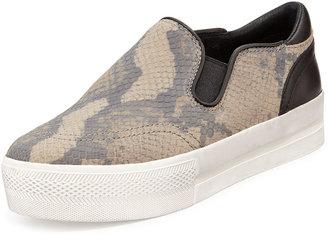 Ash Jungle Snake-Print Slip-On Sneaker
