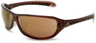adidas Agilis Sunglasses Transparent Brown / LST Contrast Gold