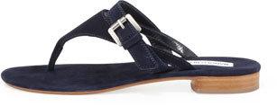 Manolo Blahnik Primona Suede Thong Sandal, Navy Blue