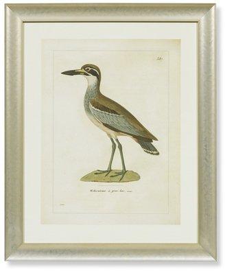 Williams-Sonoma Coastal Bird Artwork