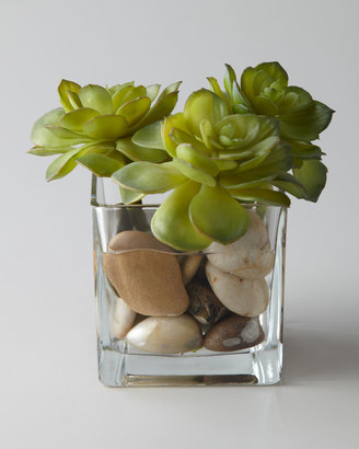 "John-Richard Collection Rocky Succulents"" Faux Greenery"