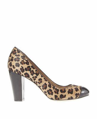 Ann Taylor Addison Leopard Print Haircalf Block Heels