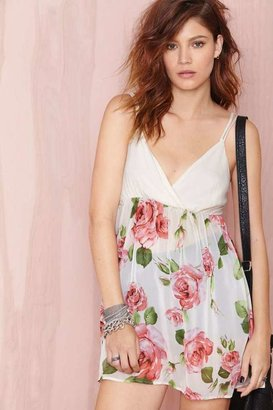 Nasty Gal Laura Dress