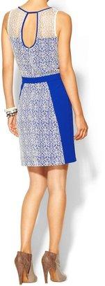Juicy Couture C.Luce Contrast Lace Dress