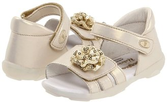 Naturino Falcotto 181 SP12 (Infant/Toddler) (Gold) - Footwear