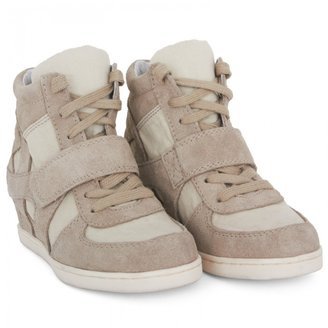 Ash Shoes Clay Grey Wedge Sneakers