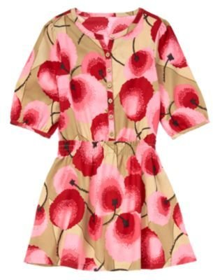 Crazy 8 Graphic Floral Dress