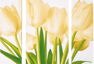 Cream Tulip Triptych Canvas - Set of 3.
