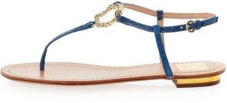 Dolce Vita Banks Snake-Print Snake-Charm Flat Sandal, Blue