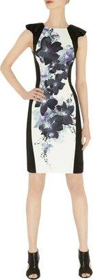 Karen Millen Oversize Oriental Print Dress