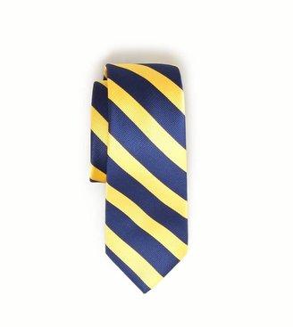 American Eagle AEO Striped Tie