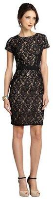 Taylor black lace cap sleeve dress