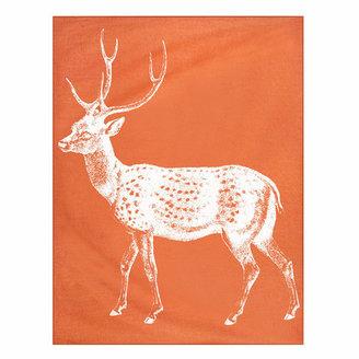 Thomas Paul Deer Throw 50x70 Alcazar