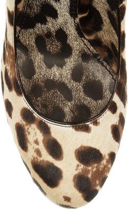 Dolce & Gabbana Leopard-print calf hair pumps