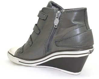 "Ash Genial"" Stone (Grey) Leather Wedge High Top Sneaker"