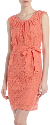 Neiman Marcus Belted Eyelet Dress, Grapefruit
