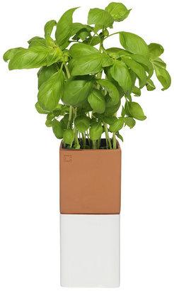 CULT Design Sweden Evergreen Herbpot Small