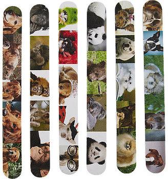 ASP Animal Printed Files Monkeys