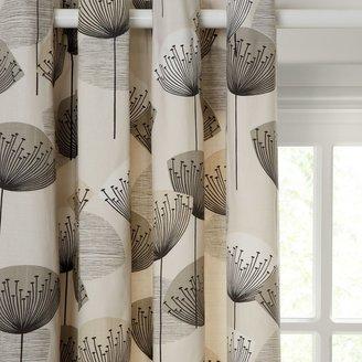 Sanderson Dandelion Clocks Pair Lined Eyelet Curtains, Neutral