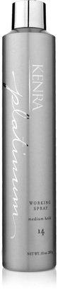 Kenra Professional Platinum Working Spray 14